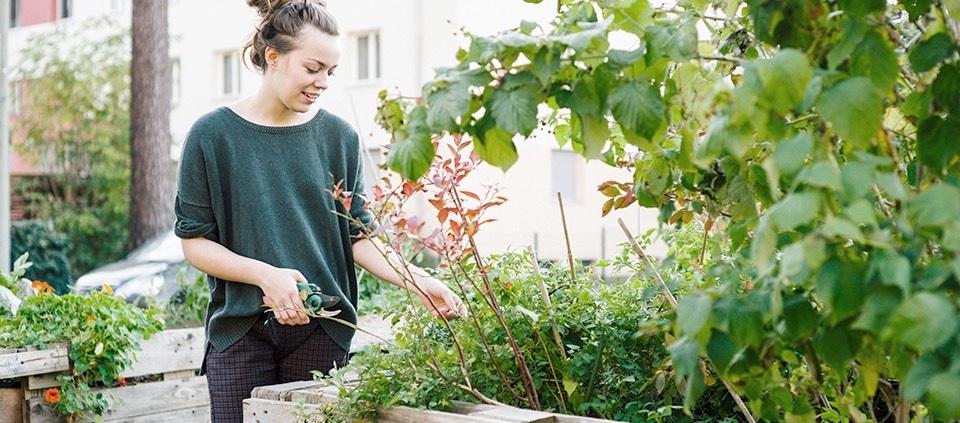 Empreendedora cuidando do jardim
